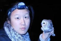 Cynthia Wang